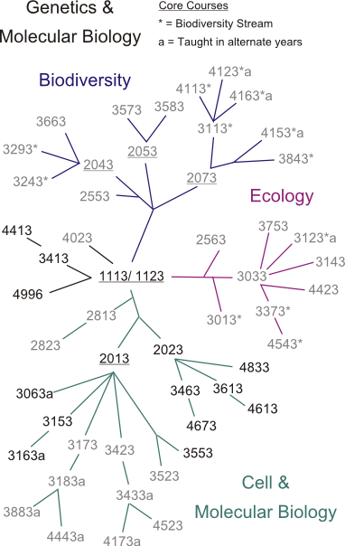 tl_files/sites/biology/Course Phylogeny/cp_genetics.png